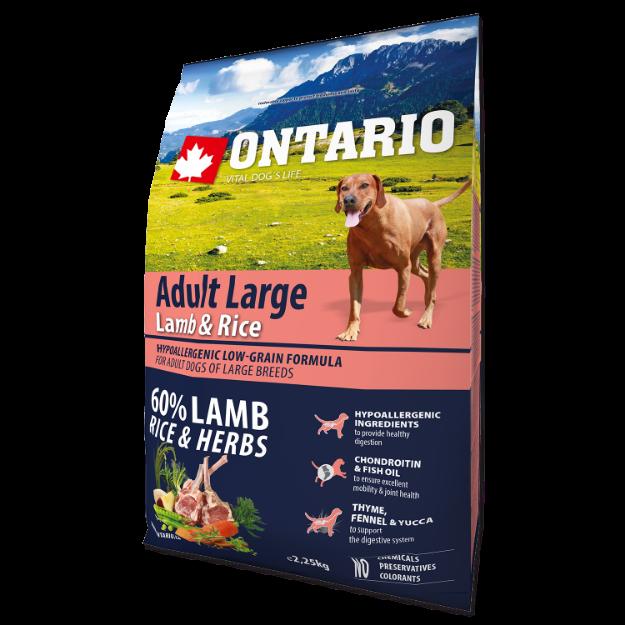 ONTARIO Dog Adult Large Lamb & Rice & Turkey 2,25kg